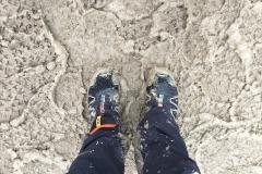 Muddy conditions...